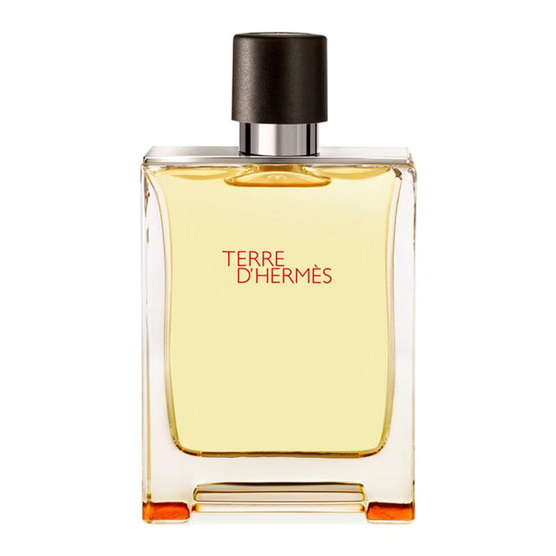 db53e3067041 Для мужчин Hermes Terre d'Hermes купить в интернет магазине в Москве ...